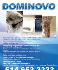 DOMINOVO Construction