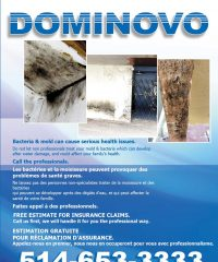 DOMINOVO Construction